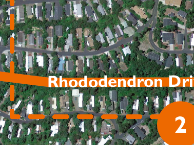 Rhododendron Drive Project Florence